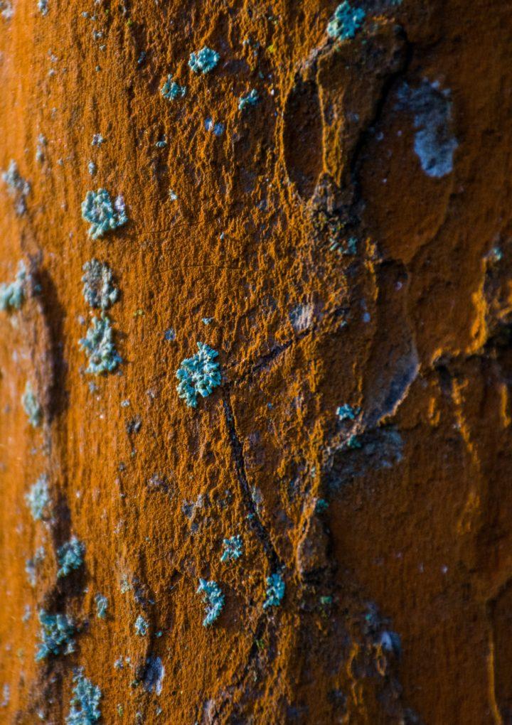 Ochrona antykorozyjna — jak ochronić metale przed powstającą korozją